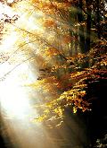 oktober leesdoelen